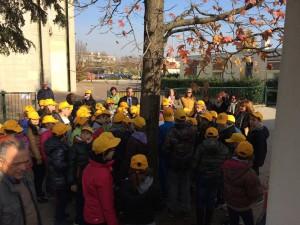 Festa albero Camponogara 2